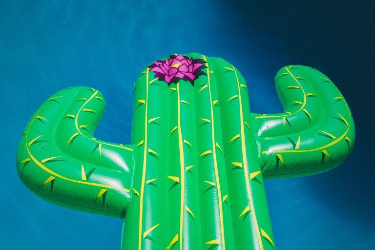 Gonfiabile a forma di cactus